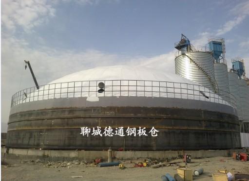 新疆2万吨熟料库1座
